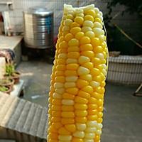 家里第一根玉米