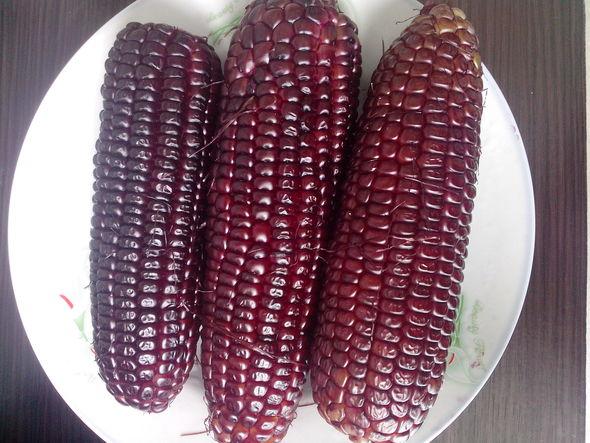 水煮黑糯玉米